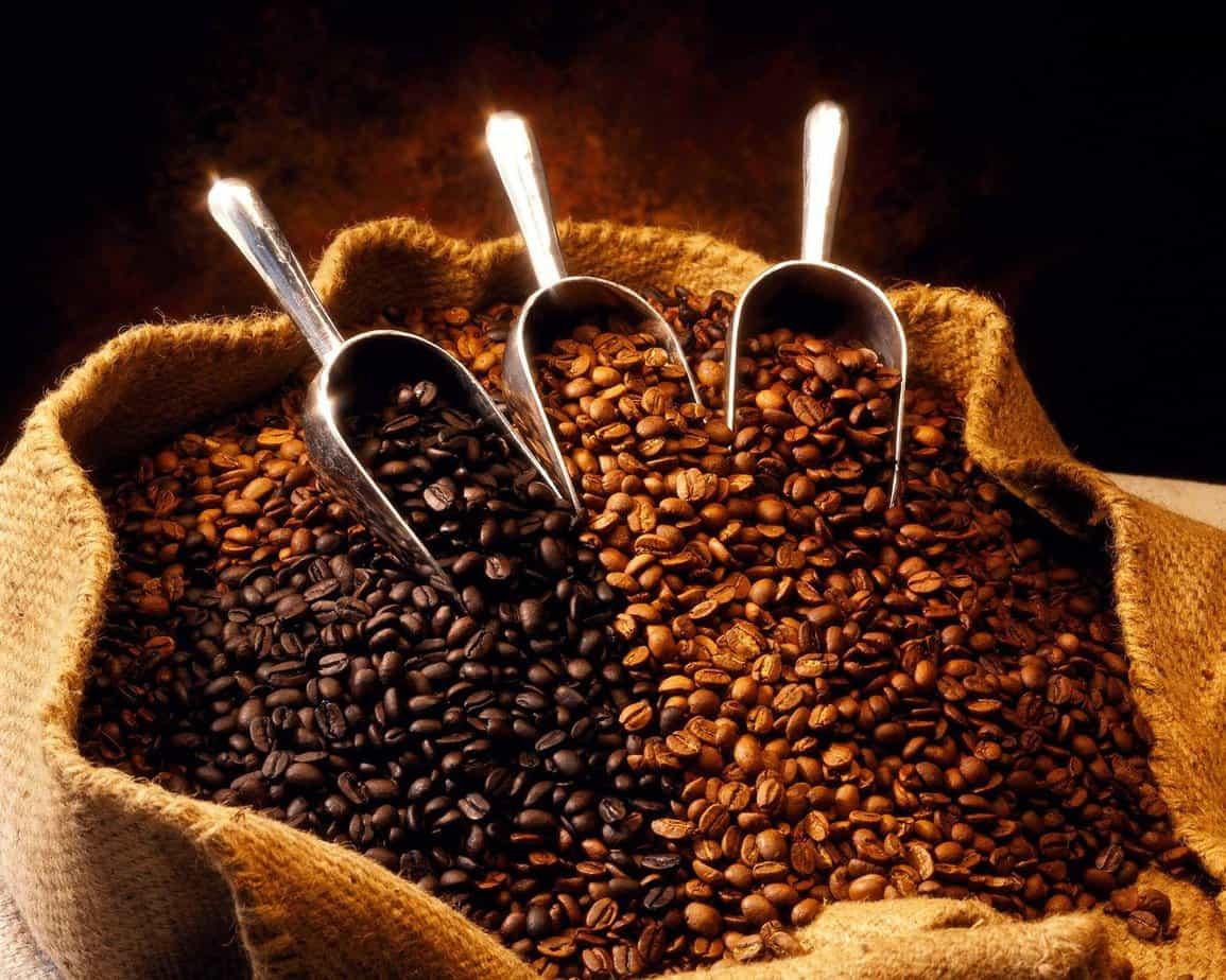 Finca-San-Nicolas-coffee
