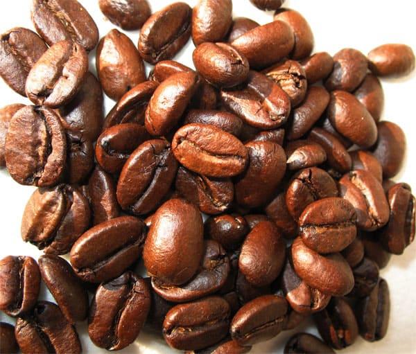 Kopi-Luwak-beans