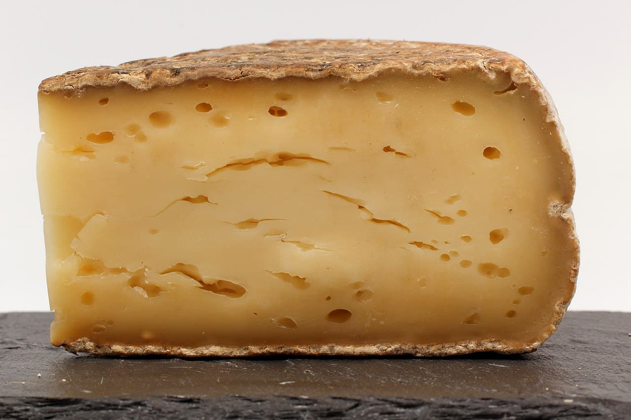 Moose-Cheese